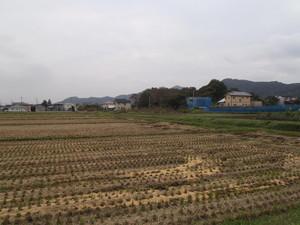 Akami_001_