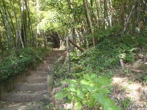 Ozawa_002_