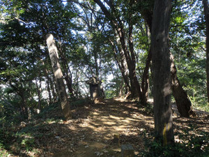 Ozawa_010_