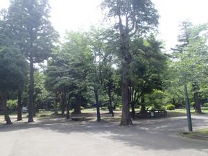 0oyama_001