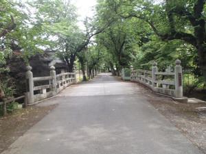 0yuuki_003