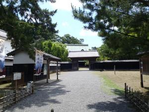 0egawa_001