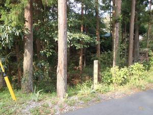 0fukasawa_002